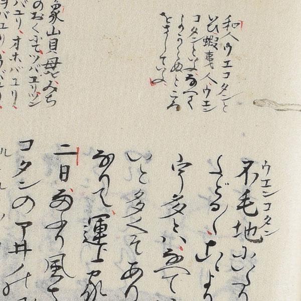 連続講座「アイヌ語地名と北海道」<br>菅江真澄がみた北海道・東北の地名