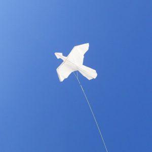 始祖鳥カイトを飛ばそう